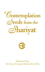Contemplation Seeds from the Shariyat